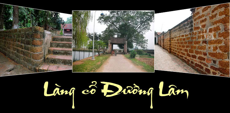 Biking tour (Duong Lam village)full day